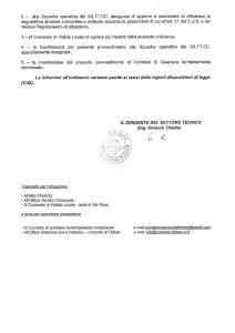 Erga Omnes via Pastorelle - ordinanza 100UT del 10.06.2015_2